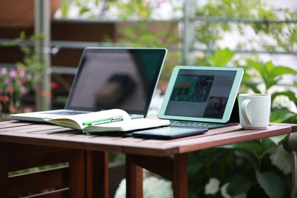 plantas en la oficina